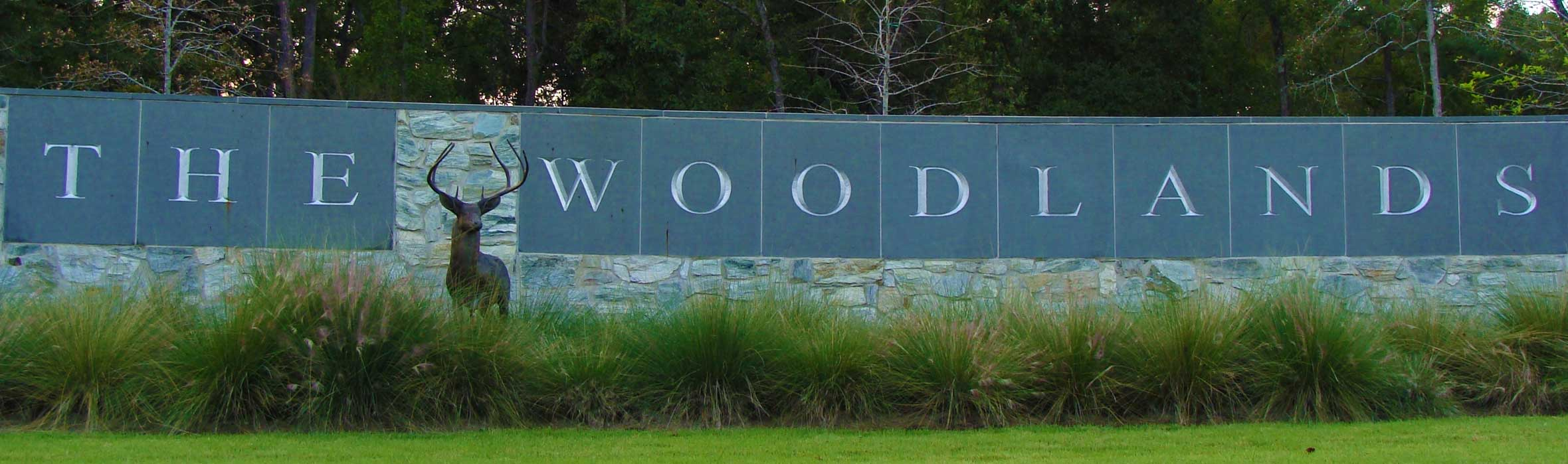 The Woodlands Texas New Homes